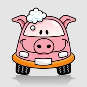 Carwash Pig