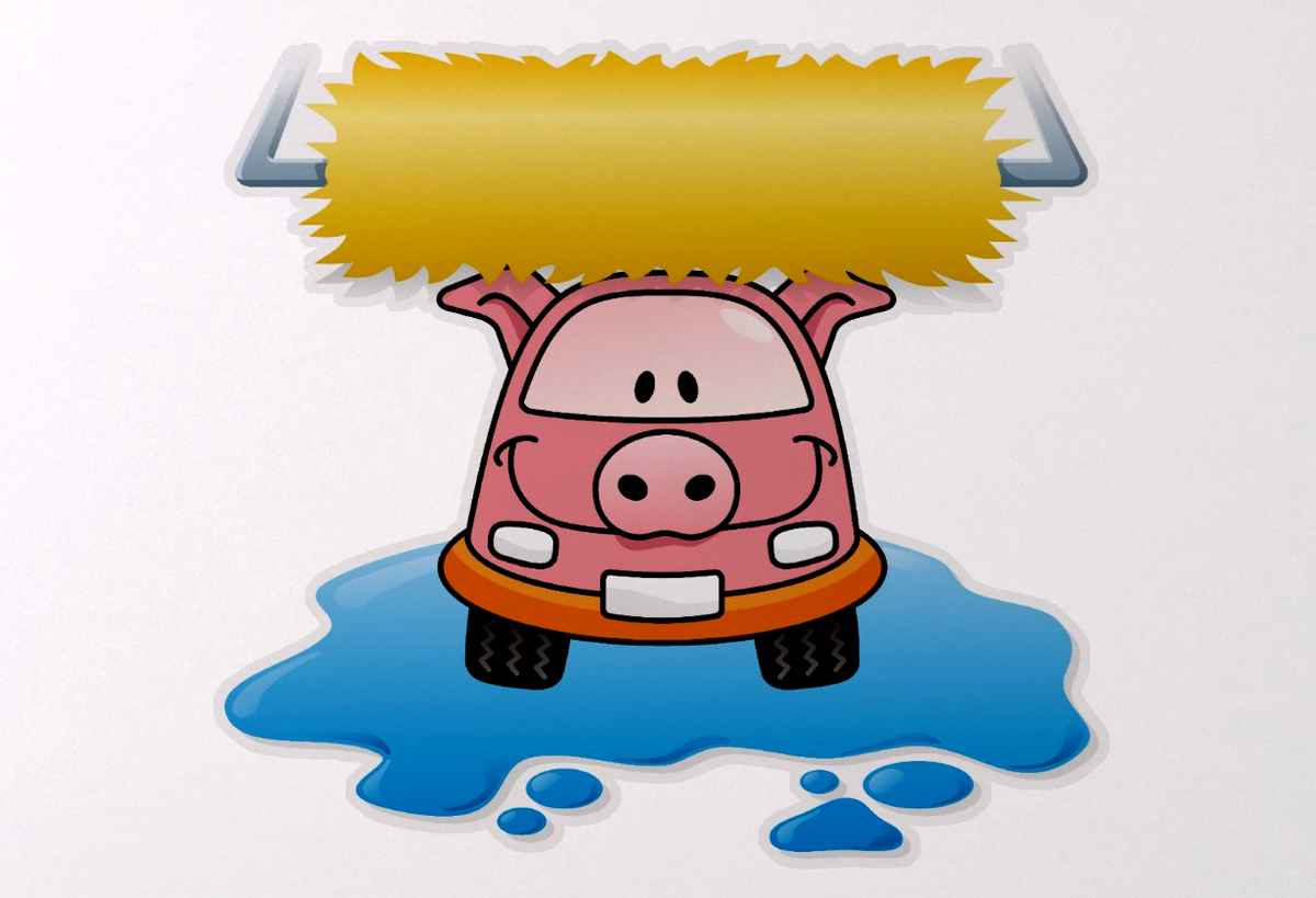 Carwash Pig Stickers