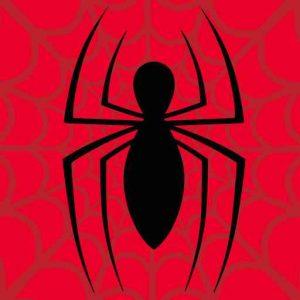 Spiderman Skinny Spider Logo