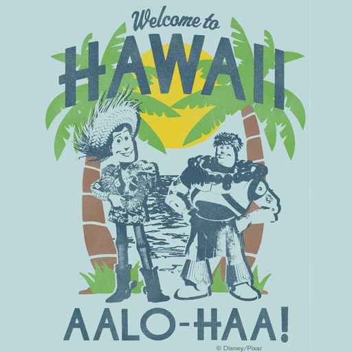 Woody and Buzz - Welcome To Hawaii